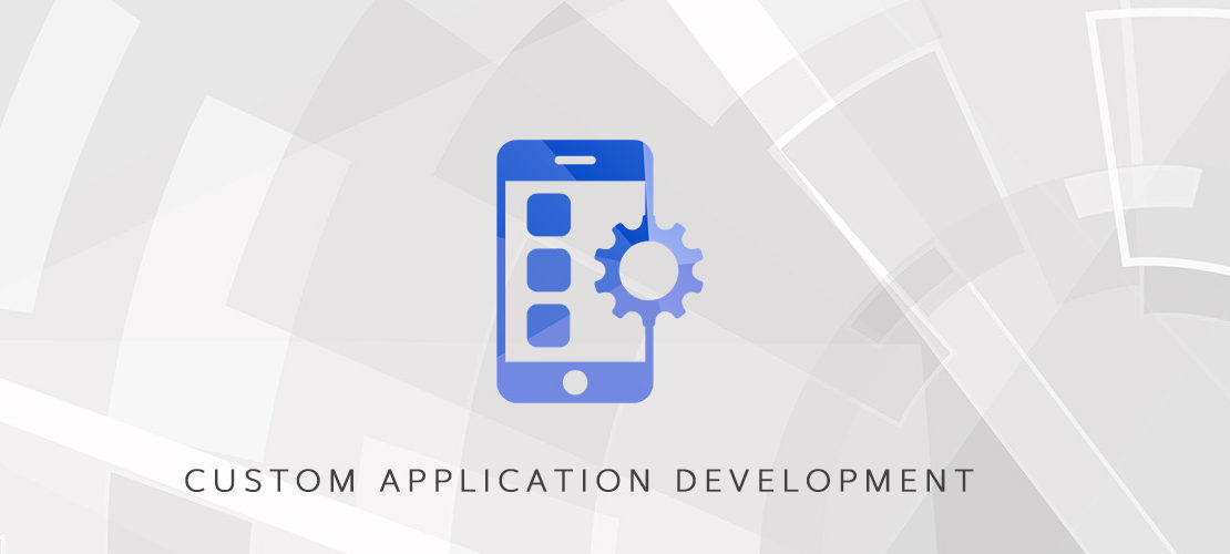 Custom Application Development – Dolf Technologies